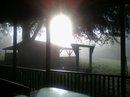 back porch, March 13, 2011 - Copy